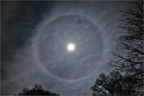 n-a-s-a:  Ring Around the Moon Credit: Jerry Lodriguss