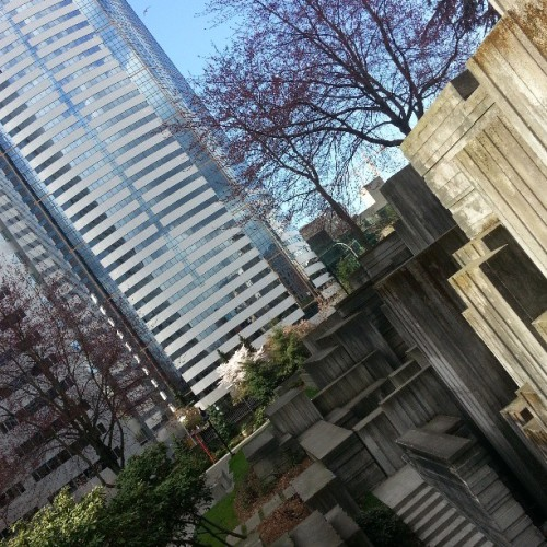 #dabs in freeway park on this nice ass day! Nothin better