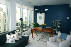 True Identity Concepts:  The dark blue walls in theis small apartment works well. Photo Source: Apartment Therapy