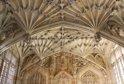 The Divinity School: Bodleian Library (by curry15)