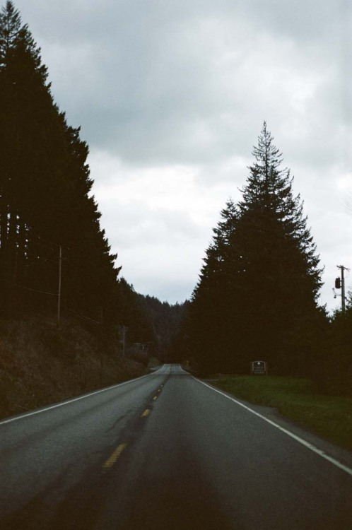 properflacko:  outofreception:  Highway 14 heading east in the Columbia River Gorge  best weather