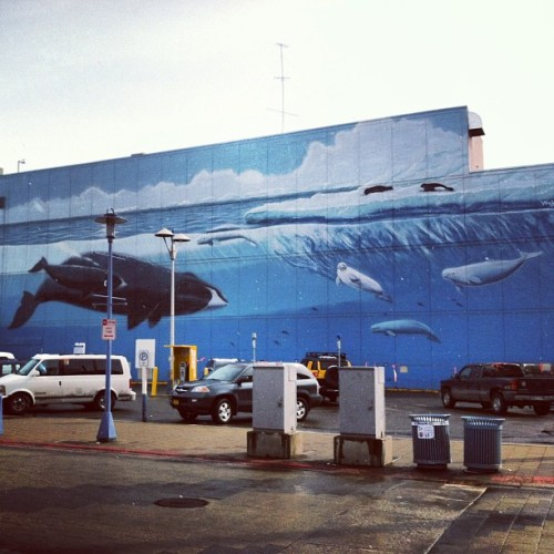 Wyland mural in Anchorage