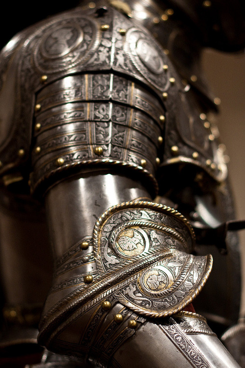 ovadiaandsons:  armor  What would Brienne wear?