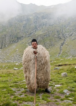 wasbella102:  Shepherd in Romania