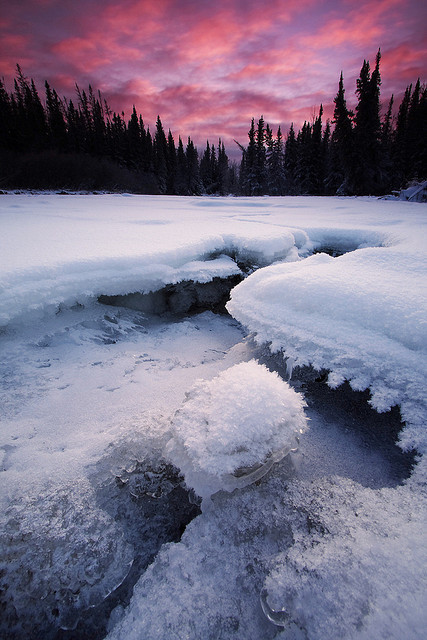 lvndscvpes:  Winters Grasp by Wolfhorn on Flickr.