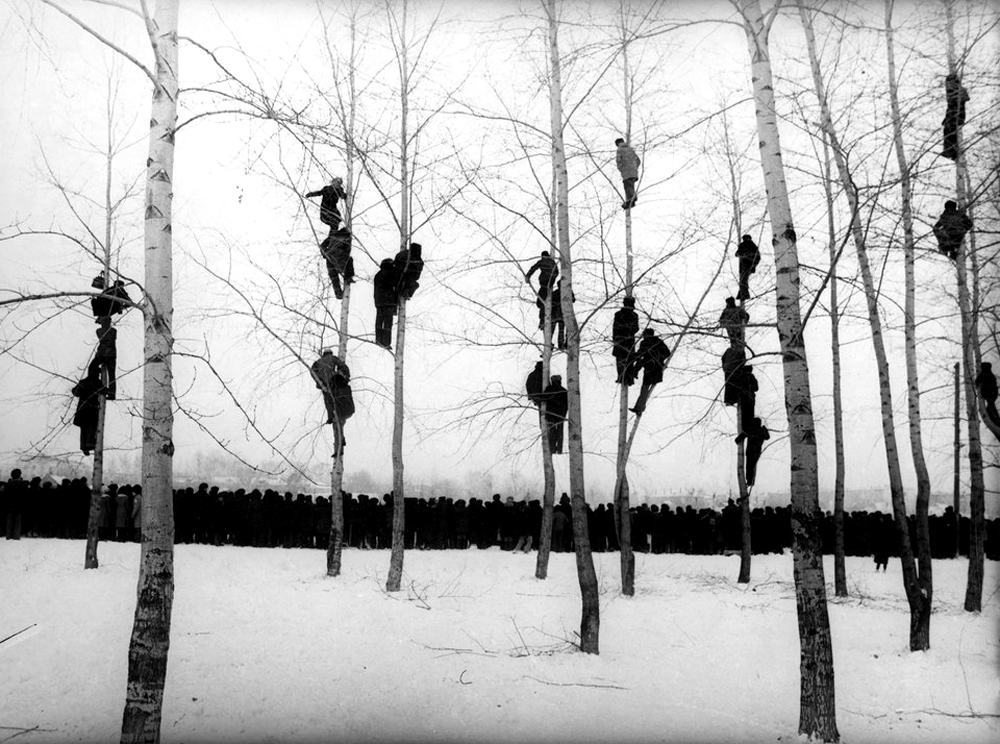 Mikola Gnisyuk - People in Trees (1964). Via likeafieldmouse.