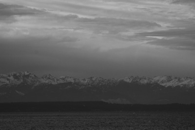 exsanguination8:  Olympic Mountains, WA Taken from Seattle