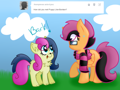 askscootahipster:  I don't speak Dog.  (http://askpuppy-likebonbon.tumblr.com/)  Bons: *Sigh* Yeah :,3 Sweet memories…