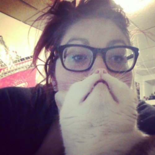 "captawesomesauce:  What do I do when I'm sick? I google ""cat beards"" on google images and here were some of the best."