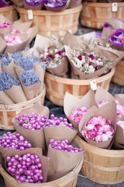 colourfulmermaid:  flowers :]
