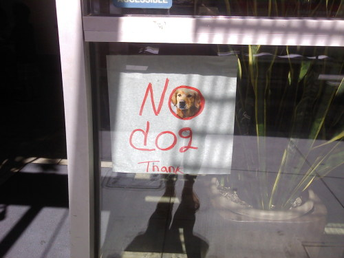 ashisaloser:  this mexican resturant knew how to lay down the rules