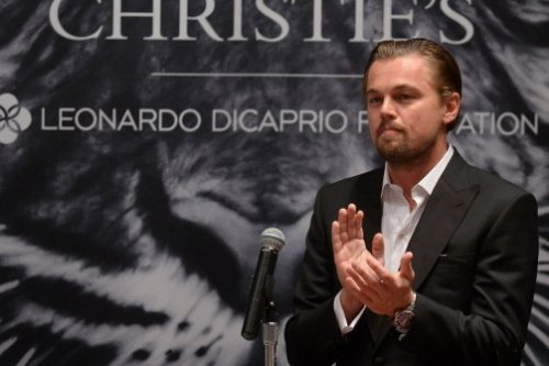 "DiCaprio's wildlife charity auction brings in $38.8 million  Actor Leonardo DiCaprio and Christie's auction house raised $38.8 million through a charity art auction and donations, Christie's said on Tuesday, with proceeds to benefit environmental and conservation causes. The 33 works in The 11th Hour Auction organized by the star of the new film ""The Great Gatsby"" sold for $31.74 million on Monday evening and set 13 records for artists including Carol Bove, Joe Bradley, Mark Grotjahn, Raymond Pettibon and Mark Ryden among others. A $5 million matching donation for three of the lots and additional gifts from donors brought the overall total to $38.8 million for The Leonardo DiCaprio Foundation, according to Christie's. ""All I can say is thank you, thank you, thank you,"" DiCaprio told the audience at the end of the auction. Read more."