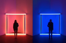 davidurbanke:  Yulu and I went to the Dan Flavin exhibit at David Zwirner today.