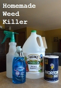 DIY Homemade Weed Killer  Have you noticed the price of Roundup lately? Wow, that stuff is expensive. It does work great, however, we can't afford that price tag! When I saw this on Pinterest I was really excited to try it. This option is beyond cheaper. Last I checked, roundup was $40 at my local gardening center. This alternative was about $3!   I never posts these types of stuff but I really want to share it with everyone!   I didn't have my own photo so I'm borrowing there's. I'm glad I tried this! I'm going to rehit the areas in our garden that didn't die. I must not have soaked it as good because some patches were shriveled up and dead within 24 hours!   Here is what you will need: 1 gallon of white vinegar 1/2 cup salt Liquid dish soap (any brand) Empty spray bottle  Put salt in the empty spray bottle and fill it the rest of the way up with white vinegar. Add a squirt of liquid dish soap.   Read more about it here: http://www.drpins.com/diy-homemade-weed-killer/