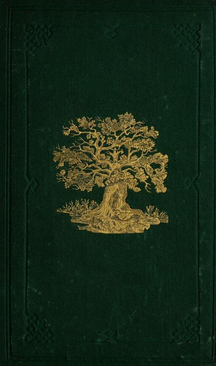 geisterseher:  C.A. Johns, The Forest Trees of Britain