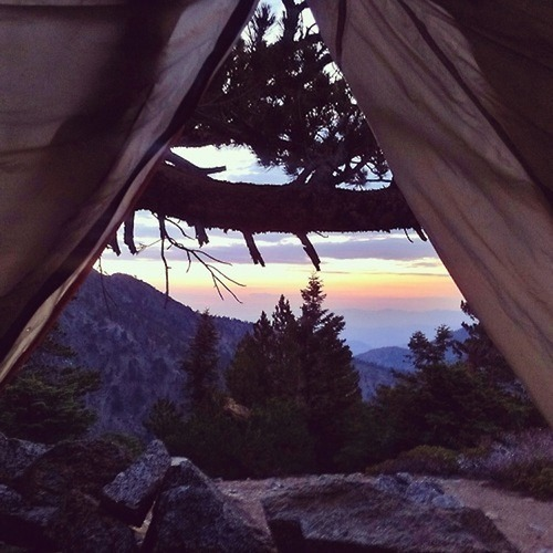 Peaking out from a tent, watching the sun rise. Beautiful.