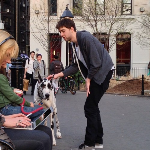 I like dogs @agefaceape #gus #springbreak4eva  (at Washington Square Park)