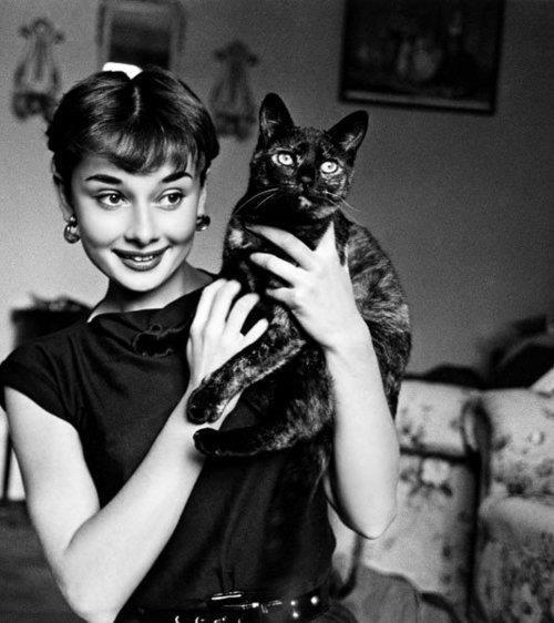 bozukparacebi:  Audrey Hepburn and Black Cat  My life in one picture!