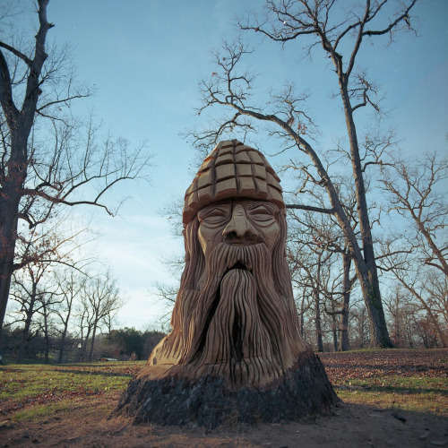 Druid Hill Park Tree Carvings  xbrucexx