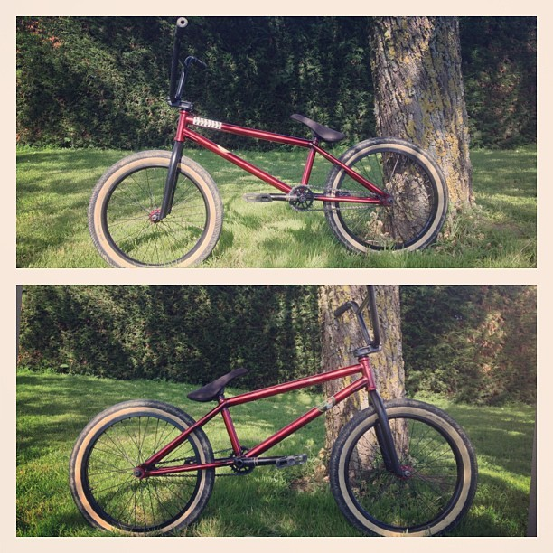 "So Clean ! #united #kl #40 #expert #21 #"" #bmx #red #france #toulouse #athome #sport #jump #crazy #clean #beautiful #sun #sunny #green #tree #home #instagood #instafun  (à Maison)"