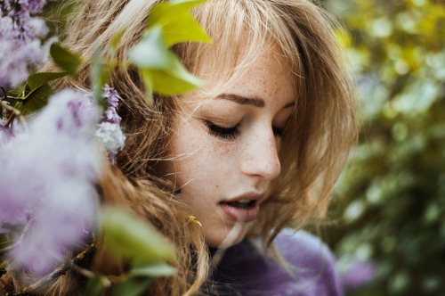 premonitions:  little lilac sister by laura zalenga on Flickr.