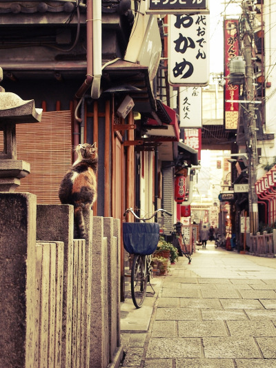 fuckyeahjapanandkorea:  On A Back Street (by Matsuura)