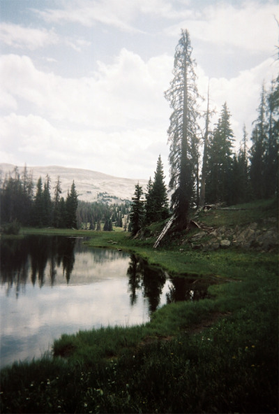 vacants:  Wy_Summer_7 (by Clay Kippen)