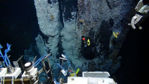 New Life Forms Expected from Deep Sea StudyResearchers steering a remote-controlled submarine around the world's deepest known hydrothermal vents have collected numerous samples from sunless depths of the Caribbean Sea where blazing hot, mineral-rich fluid gushes from volcanic chimneys that look like gnarled tree stumps.Jon Copley, chief scientist for the expedition of Britain's National Oceanography Centre, says he believes that laboratory analysis in the coming months will reveal some new life forms that have evolved in the pitch-black vent areas of the Cayman Trough, more than 3 miles below the sea's surface between the Cayman Islands and Jamaica.Read more: http://www.laboratoryequipment.com/news/2013/02/new-life-forms-expected-deep-sea-study