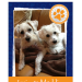 Have you seen the custom trading cards you can get for your dog(s) at Just4MyPet.com ? So cute!