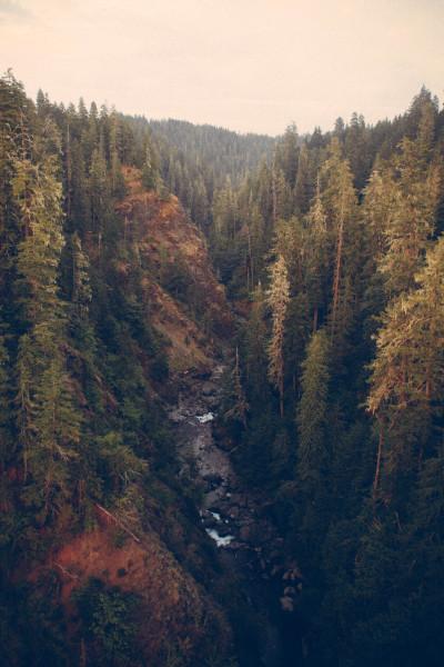 zacharysnellenberger:   Vance Creek | Zachary Snellenberger
