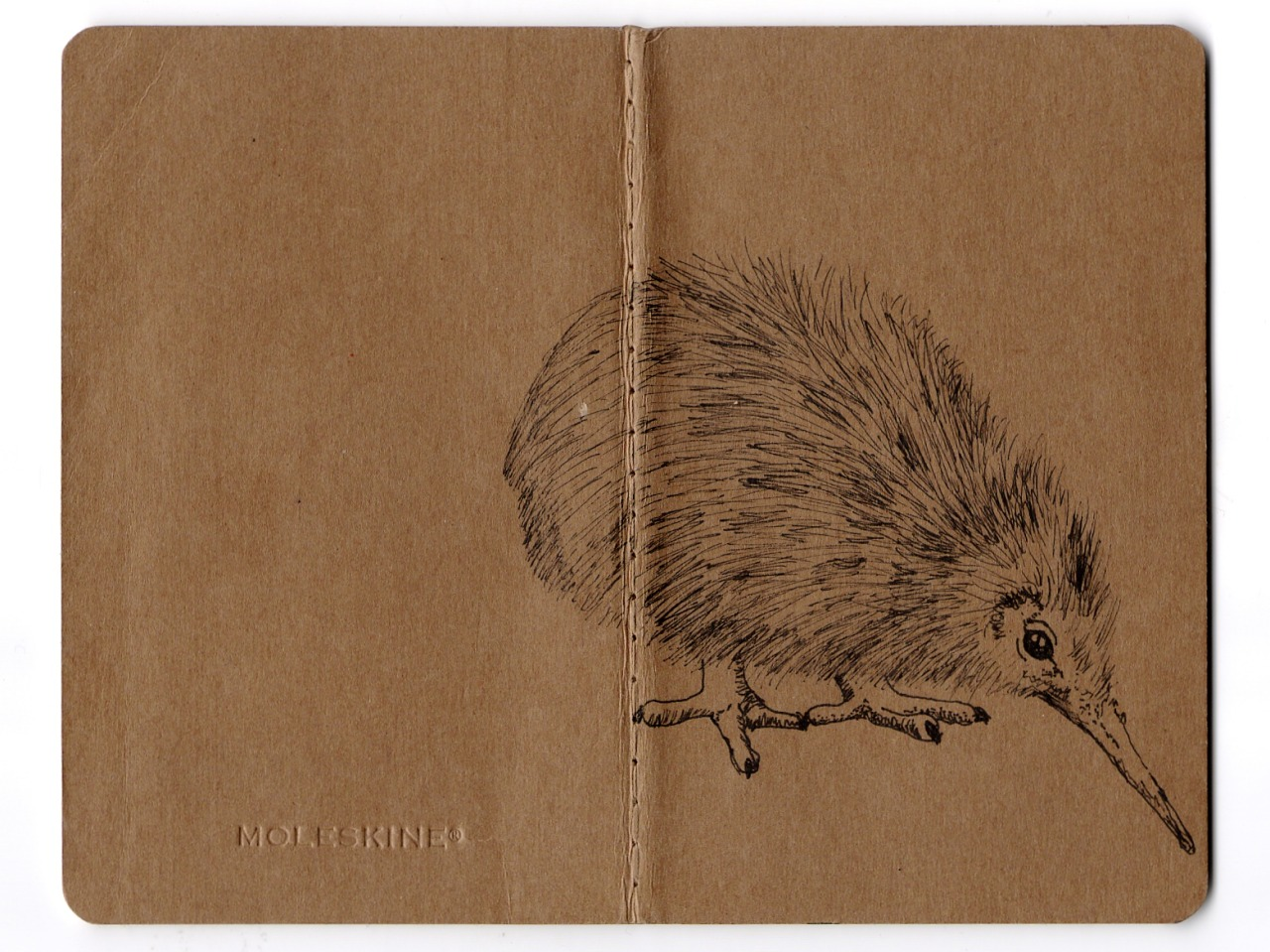 Here's the kiwi bird I drew on a little moleskine for Tony. <3