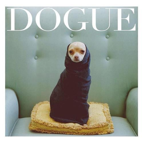 DOGUE: If Dogs Made The Cover Of VogueVia Susan Somerset