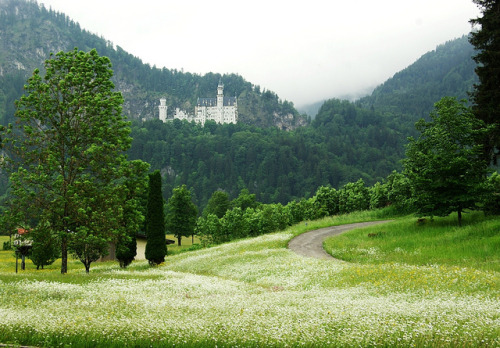 aphelia:  Neuschwanstein in the distance by shaferlens on Flickr.