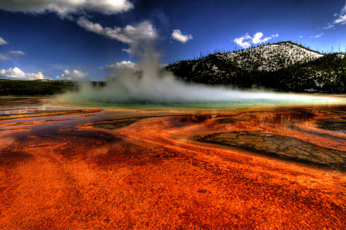 odditiesoflife:  Grand Prismatic Spring Located in Yellowstone National Park, Wyoming, the Grand Prismatic Spring is the largest natural hot spring found in the US. The spring has a scalding temperature of 160 °F (70 °C), a total depth of 160 feet and a diameter of 300 feet. The vivid, rainbow colors in the spring are the result of pigmented bacteria in the microbial mats that grow around the edges of the mineral-rich water.