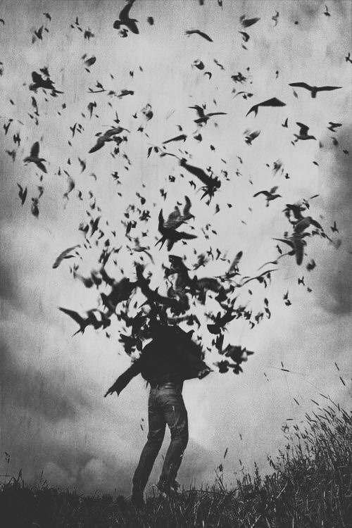 vintage gothic vintage photography vintage gothic vintage horror vintage aesthetic dark aesthetic goth aesthetic gothic aesthetic aesthetics aesthetic scary birds black and grey black and white monochrome what