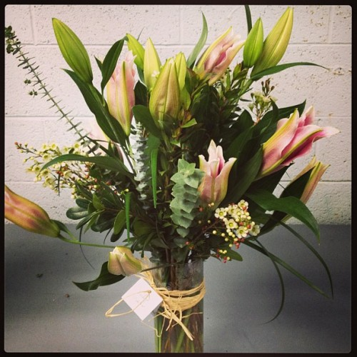 Who will celebrate their birthday today with these sure-to-please stargazer lilies?!?
