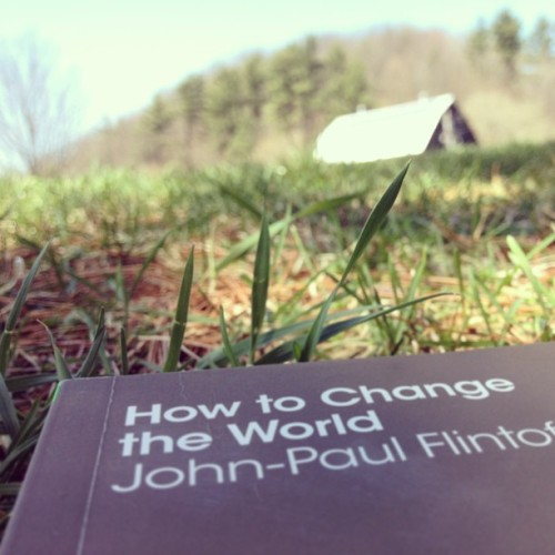 danielfrancavilla:  In the grass: How to Change the World
