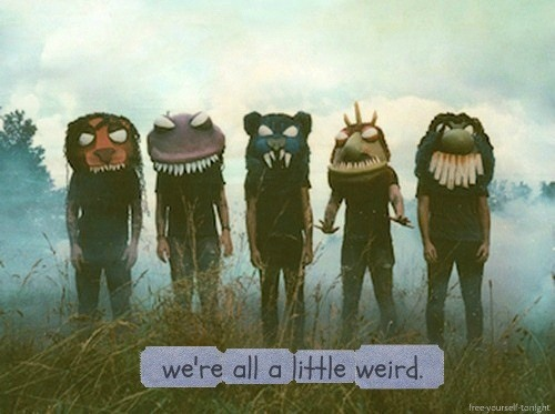 lostinalthecitylights:  QUOTES / We're all a little weird. on We Heart It - http://weheartit.com/entry/57463548/via/mary_gonzales_313 Hearted from: http://m.pinterest.com/pin/77827899781554029/