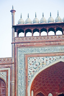 lespritmodeste:  Detail - Main Gate - Taj Mahal, Agra by Byrd on a Wire on Flickr. A sample of Mughal architectural ornamentation - red sandstone embellished with inlaid marble stonework.
