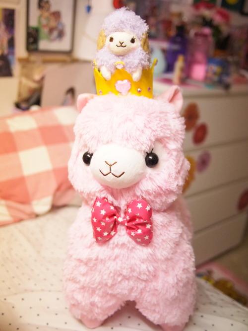 wooly wooly the sheep waku waku party alpacasso alpacassos alpacasso arpakasso pink kawaii cute plushies amuse japan amuse japan