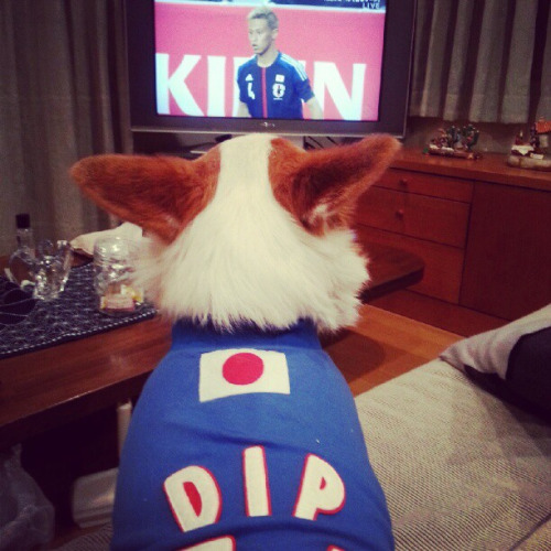 Dip is watching an international friendly/WCQ warm up in his own jersey.  Instagram: rokomax