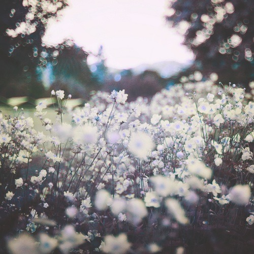 summer-never-lasts:  nobody said it was easy | via Tumblr on We Heart It. http://weheartit.com/entry/60978983