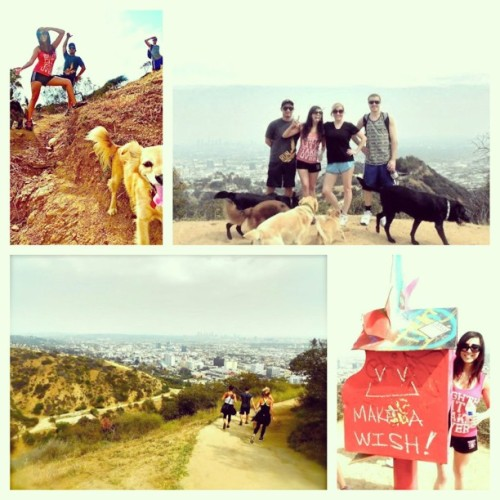 Yesterday in #LA #runyoncanyon #hiking #healthandfitness #makeawish #friends #family #bestworkout #lovelife #grateful #socal #westcoast #westhollywood #hollywood #beautifulday #funday #sorelegs #feelsgood