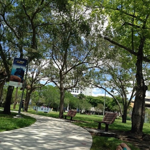 gg128:  #fiu #chill #beautifulday #sunny #breeze 👌💙💛