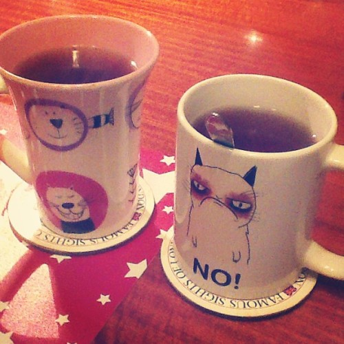 Rocking our cat mugs w/ @sallydiamonds xD #grumpycat (at Sani's Place)