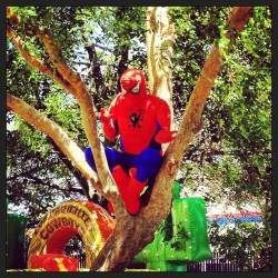 Look who showed up #spiderman #swisspark #newark #pisco #peru  (at Swiss Park)