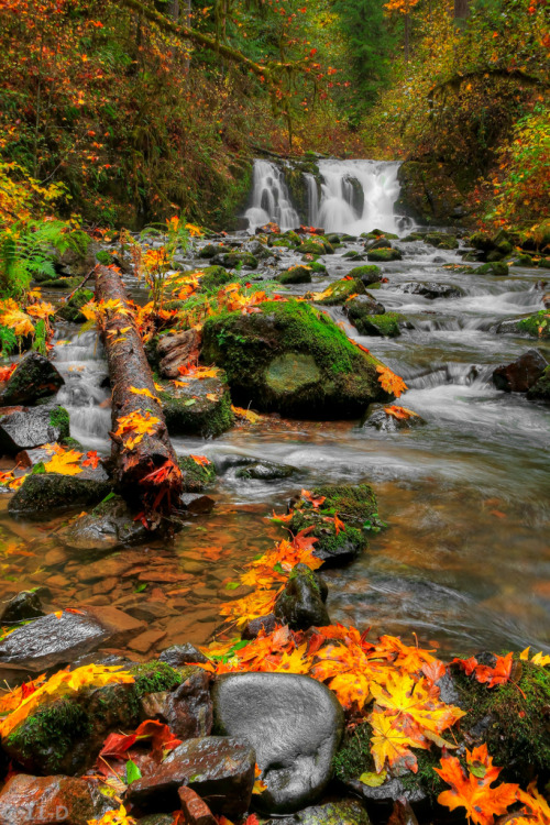 Crystal Falls-Autumn (by 11th Dimension Photography)