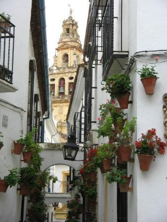 Spanish Iphone App: Taplingua- Travel Tip: Córdoba,Spain ¡Hola! Are you planning to travel to Spain or Latin America this Spring or Summer ? Are you…View Post