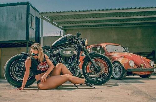 blonde girl harley davidson nightster sportster 1200 volkswagen beetle maggiolino