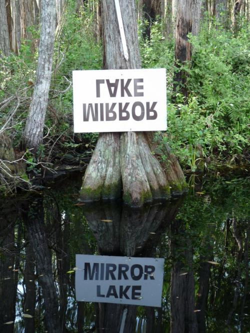 aquaticwonder:  Mirror Lake
